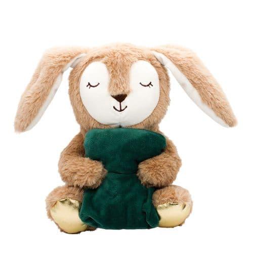 Happy Pet Snoozy Bunny