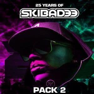Skibadee - 25 Years Of - Pack 2 - USB
