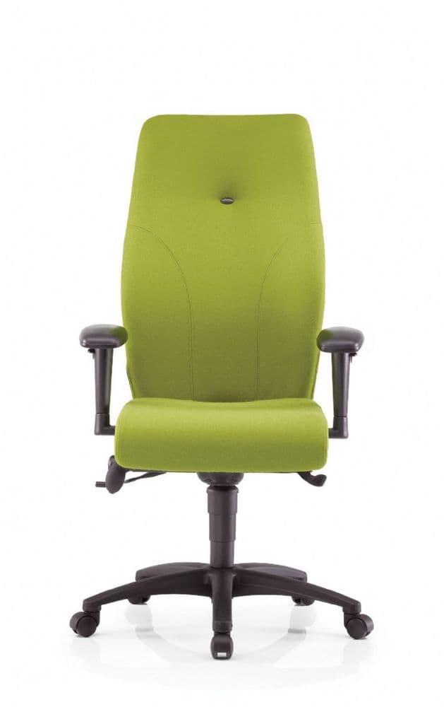 Pledge Ethos ergonomic posture chair with high back