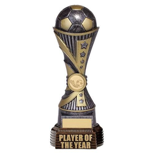 All Stars Football Player Of The Year Antique Silver & Gold 260mm