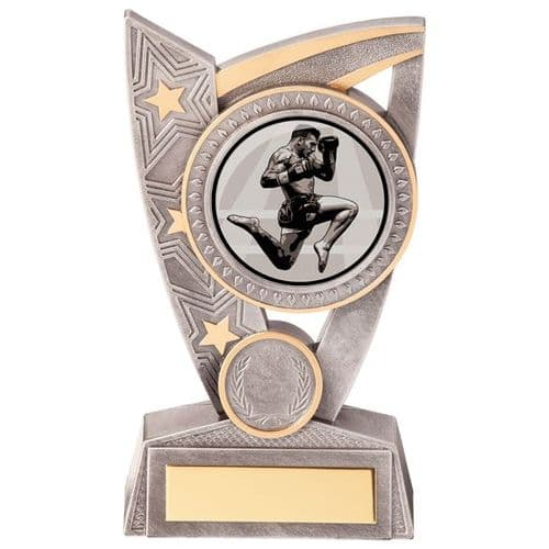 Triumph Kickboxing Award 150mm