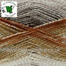 142 - EARTHY - KING COLE SHINE DK SELF STRIPING GLITTER KNITTING & CROCHET YARN